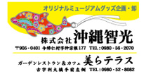 株式會社沖繩智光