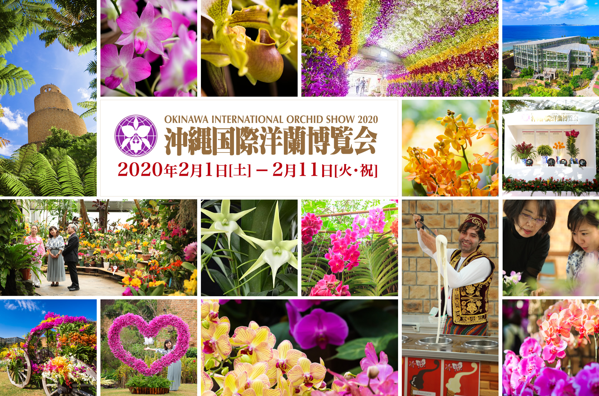 Big event of international scale that orchid on approximately 20,000 points of Monday (holiday) is displayed for okinawakokusaiyoranhaku*kai from Saturday, February 3, 2018 to February 12. Venue is decorated with orchid of one side, and you can see the world of fantastic flower. Contest ... of flower island Okinawa - orchid and flowers of Okinawa