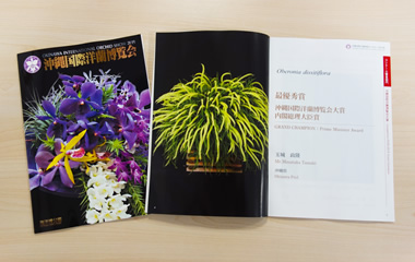 Cover of collection of winning a prize flowers