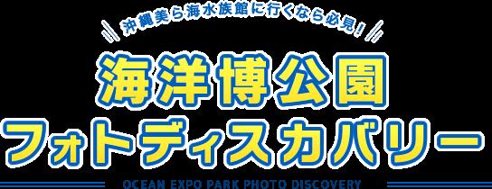 해양박포토 발견 OCEAN EXPO PARK PHOTO DISCOVERY
