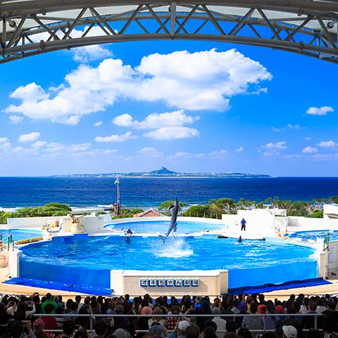 Ocean Expo Park of July