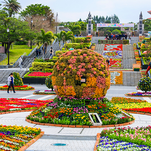 Ocean Expo Park of January