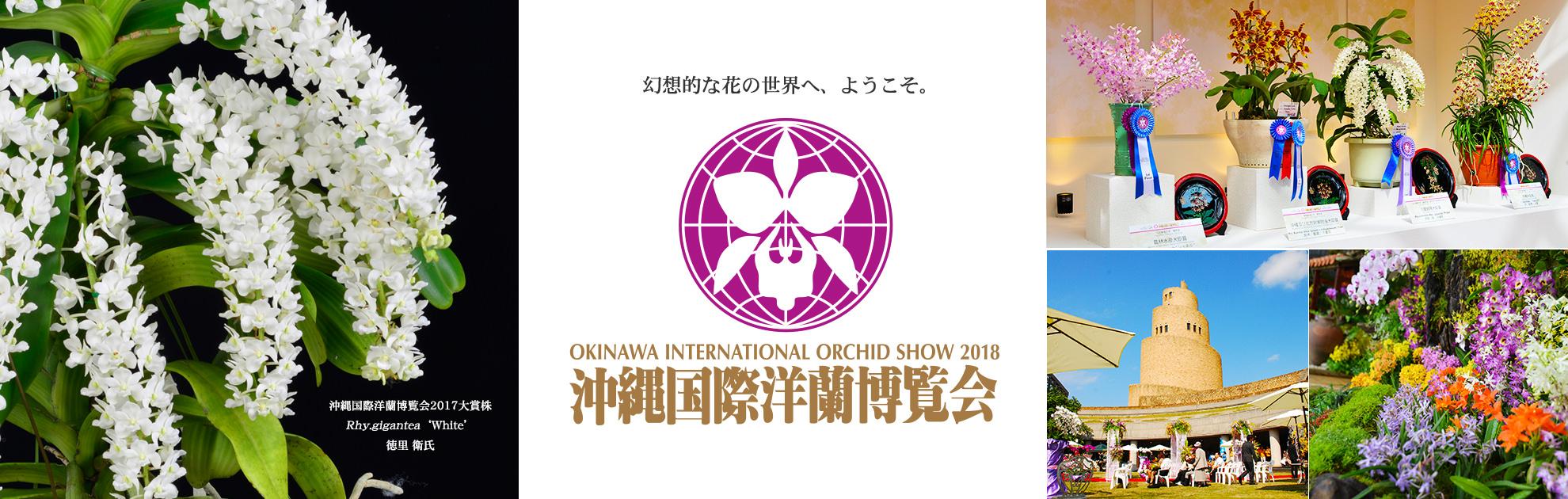 오키나와국제 서양란 박람회 2018