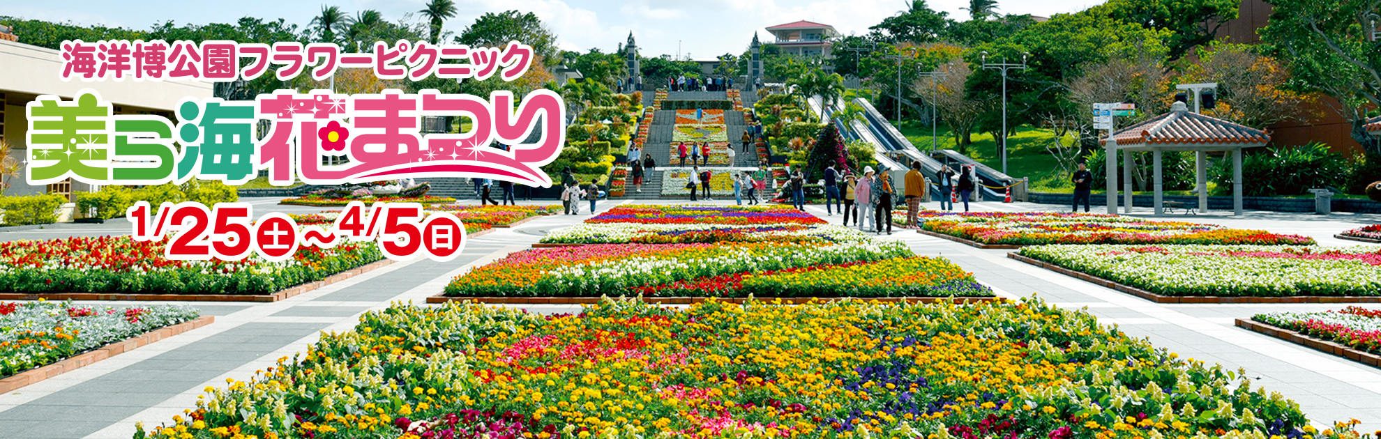 The Ocean Expo Park 15th beauty and others Sea flower Festival holding!
