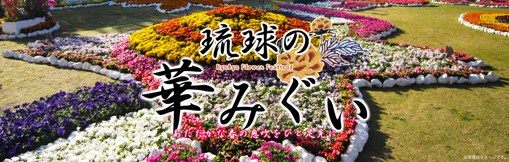 Colorful flower and houseplants are in full glory in the sinter migui garden of Shurijo Castle Park Ryukyu. How about for taking a ceremonial photograph?