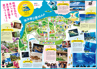 The highlight introduction pamphlet of Ocean Expo Park can be downloaded.