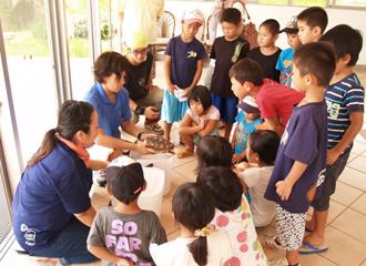 「바다거북 학습회」참가 단체 모집~바다거북에 대해 배우자!~