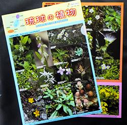 琉球的植物展~国立科学博物馆巡回博物馆in海洋博~