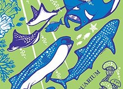"""紀念品""""紀念沖繩美開設海水族館的15周年""""毛巾"""