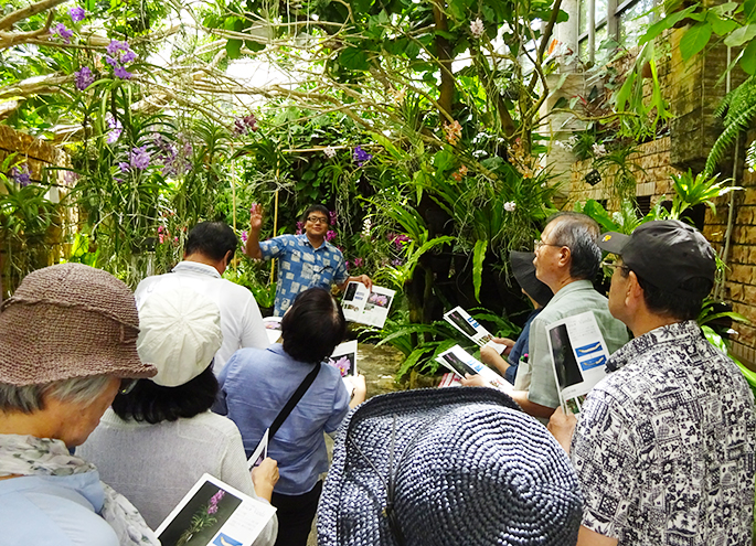 Guided tour in tropical dream center
