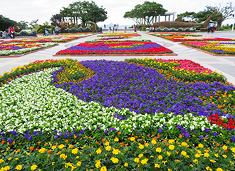 Ocean Expo Park 14th beauty and others Sea flower Festival