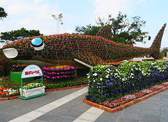 The Ocean Expo Park 14th beauty and others Sea flower Festival
