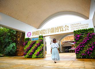 熱帶夢中心在期間的時候染上洋蘭博覽會色。