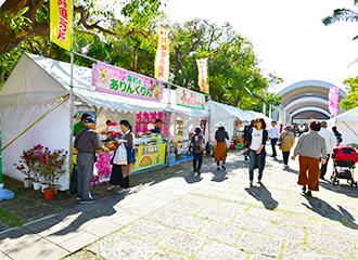 到入口的途中也準備有關蘭花的分店以及地區合作小房間。能享用熱鬧的氣氛。