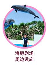 oki-chan海豚剧场、周边设施