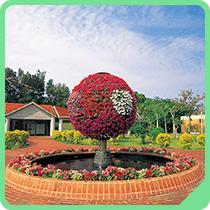 열대・아열대 도시 녹화 식물원