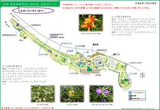 熱帶亞熱帶都市綠化植物園
