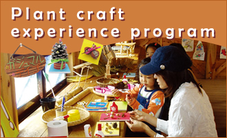 Plant craft experience program