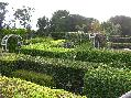 矮樹籬笆、弦性樣品區
