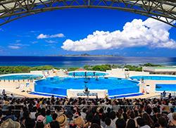 Okichan海豚劇場