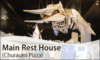 Main Rest House (Churaumi Plaza)