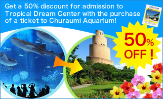 Get a 50% discount for admission to Tropical Dream Center with the purchase of a ticket to Churaumi Aquarium!