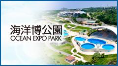 Ocean Expo Park banner