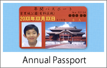 Annual passport