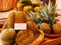 Tropical fruit exhibition
