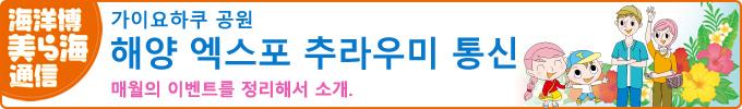 해양엑스포추라우미통신