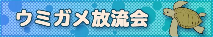 """""""海龜放歸會"""""""